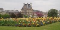 Tuilerijské zahrady.JPG