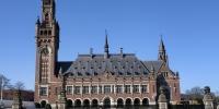 Evropský soudní dvůr Haag.jpg